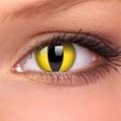 barevné čočky CRAZY cat eye 2ks